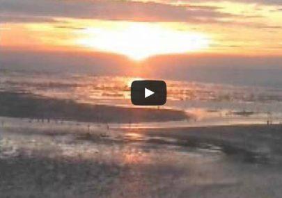 Sunrise on Canvey
