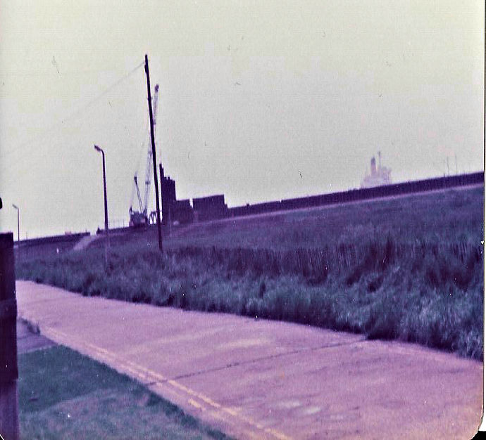 Piling at Thorney Bay 1979