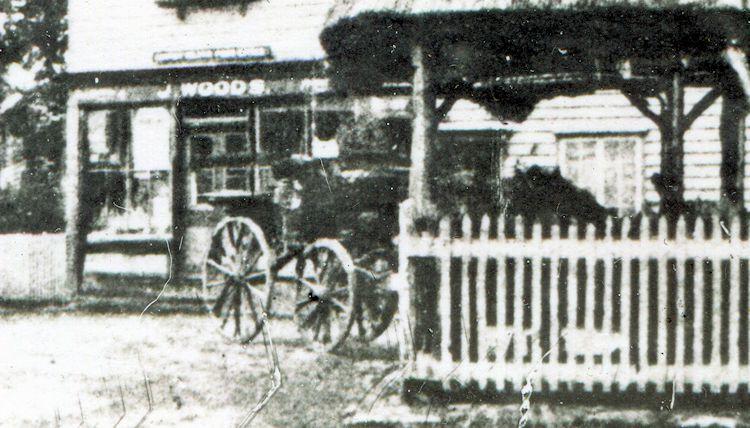 Early Pump photo