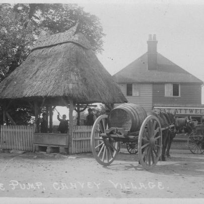 Horse drawn bowser waiting to collect water from the pump. | Swanson Collection