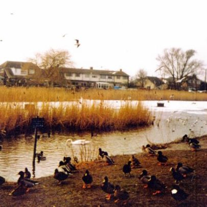 Canvey Lake in the winter time. | Wendy Knight