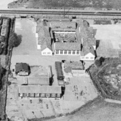 William Reed School